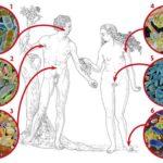 母親の細菌が決める子供の健康とスポック博士の育児書