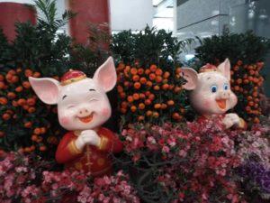 豚年の吉祥物